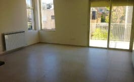 Old Katamon, New, 3 BR apartment