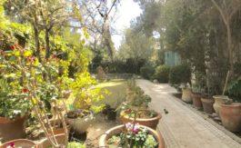 Abu-Tor - Garden apt 4 BR